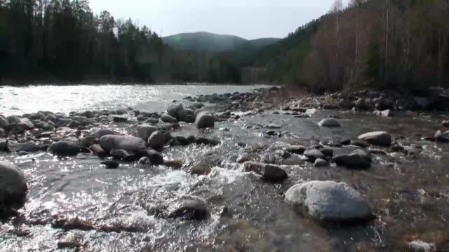 山の川 temnik で春のきれいな水と石の岩の底。 - 自然旅行点の映像素材/bロール
