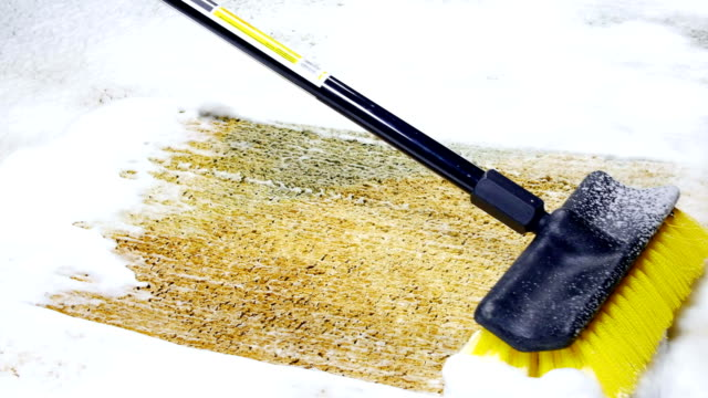 Cleaning carpet with brush video