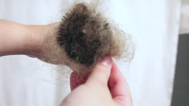 vídeos de stock e filmes b-roll de cleaning hair out of brush - puxar cabelos