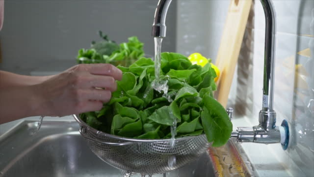 Cleaning Lettuce for salad