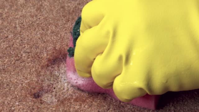 reinigung von wein flecken roten teppich - schmutzfleck stock-videos und b-roll-filmmaterial