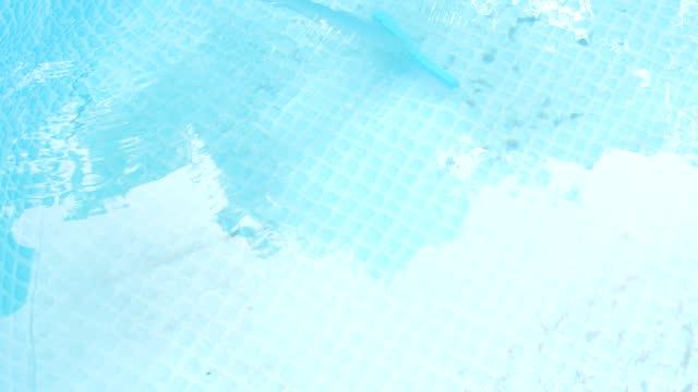 pulizia piscina con una spazzola speciale - libellulidae video stock e b–roll