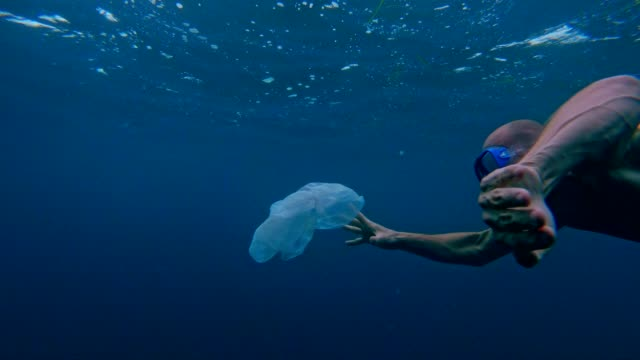 cleaning the ocean. man catching plastic bag under sea surface - sustainable living stock videos & royalty-free footage