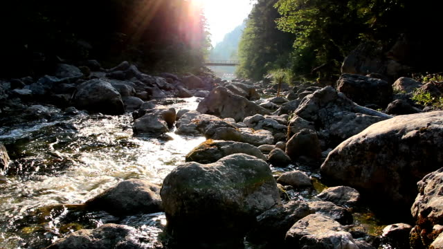 Clear water on Alps mountain river with sun rays and forest