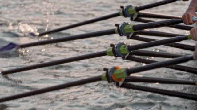 vídeos de stock, filmes e b-roll de slo mo cleaver skiff, atingindo a superfície da água - remo esporte aquático