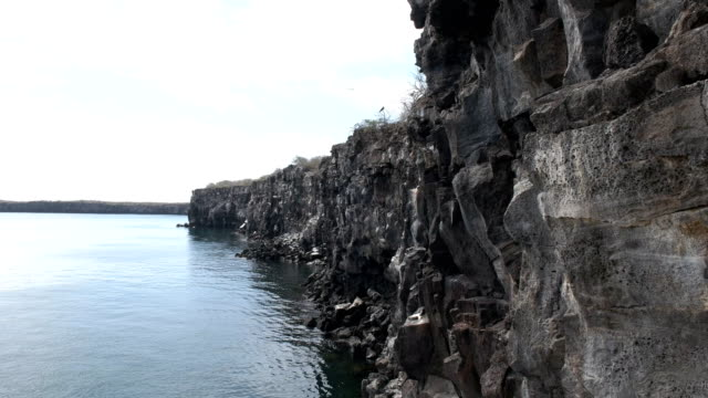 vídeos de stock, filmes e b-roll de falésias da caldeira vulcânica de etapas do príncipe philip, na ilha genovesa - ilha genovesa