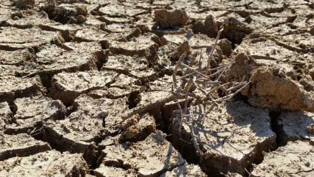 Climate Change Drought Disaster Cracked Mud A drought is a period of below-average precipitation in a given region, resulting in prolonged shortages in the water supply, whether atmospheric, surface water or ground water. dry stock videos & royalty-free footage
