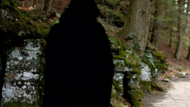 Cloaked Figure Walks Down Mossy Stone Path In The Woods video