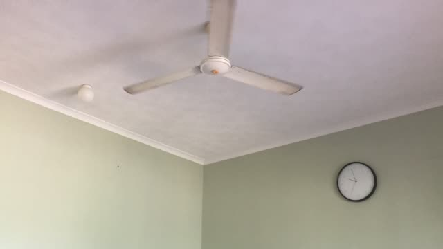 Clock  time and a ceiling fan turning in a room