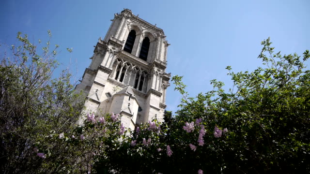 torre dell'orologio di notre dame a parigi, francia - gargoyle video stock e b–roll