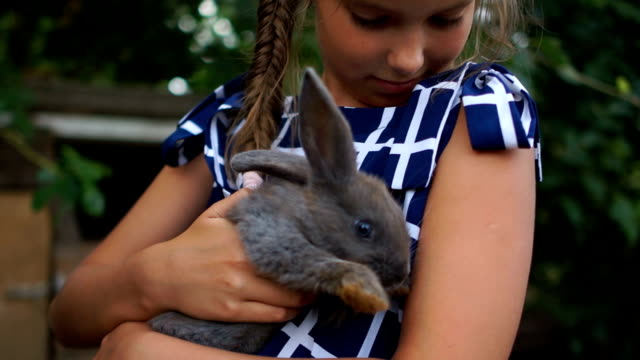 vídeos de stock e filmes b-roll de close portrait of a girl with a rabbit. the child gently hugs a gray fluffy rabbit, a happy childhood - animal doméstico