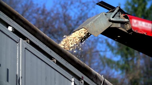 hd lento: chiudere colpo di una grondaia spurting particelle di legno - segatura video stock e b–roll