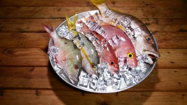 Close up above fresh fish food turning round tray with ice with wooden background