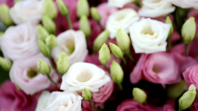 close up bouquet of blossoming rose in vase. - bouquet video stock e b–roll
