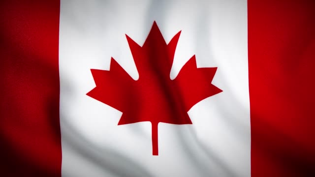 4K Close up Canadian Flag waving stock video