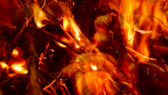 Close Up Fire Burns Everything video