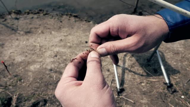 fischer-spieß angeln wurm am haken zum angeln im freien hautnah - angelhaken stock-videos und b-roll-filmmaterial