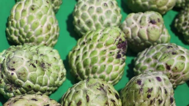 taze organik yeşil muhallebi elma tropikal meyve (şeker elma, annona, sweetsop), taze tatlı beslenme meyve grubu kadar yakın.  gece meyve pazarı lamphun tayland. - muhallebi stok videoları ve detay görüntü çekimi