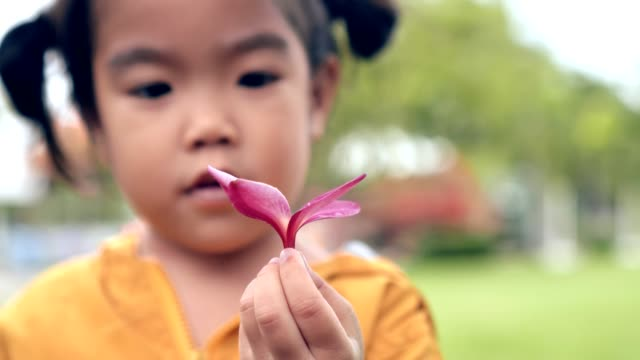 close up hand Asian girl-child show pink flower and spinning