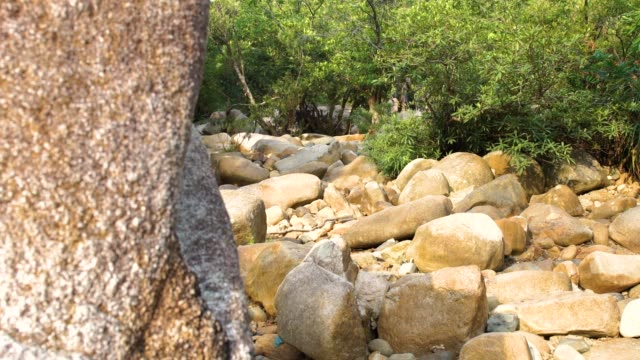 Close up large stones and boulders in parched river in jungle. Dry river bed with big rocks during drought season. Dry river on drought parched in rainforest Close up large stones and boulders in parched river in jungle. Dry river bed with big rocks during drought season. Dry river on drought parched in rainforest boulder rock stock videos & royalty-free footage
