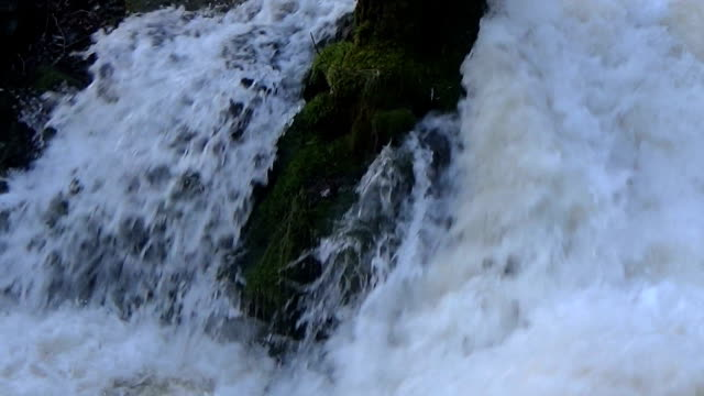 Close up of 150feet high waterfall breaking into a tree stock video footage video
