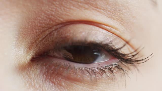 茶色の目のクローズアップ - まつげ点の映像素材/bロール