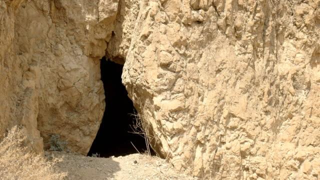 nahaufnahme von einem höhleneingang bei qumran, israel - tora stock-videos und b-roll-filmmaterial