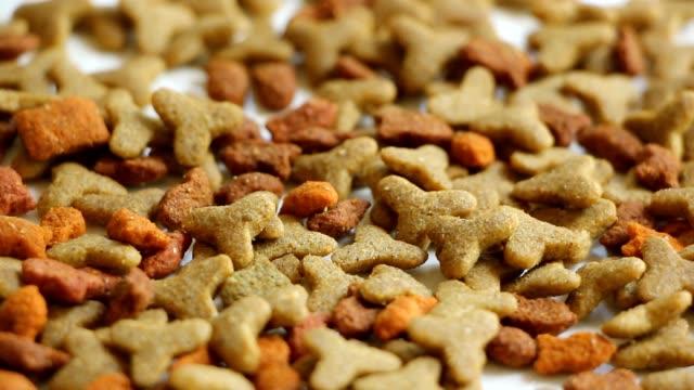 vídeos de stock e filmes b-roll de plano aproximado de comida de gato - dog food