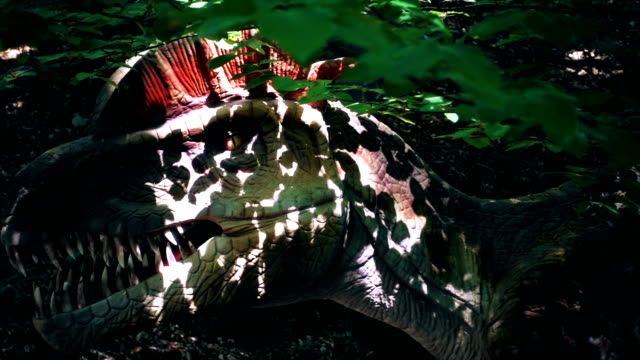 Close up of Ceratosaurus dinosaur in wild forest, panning, slow motion