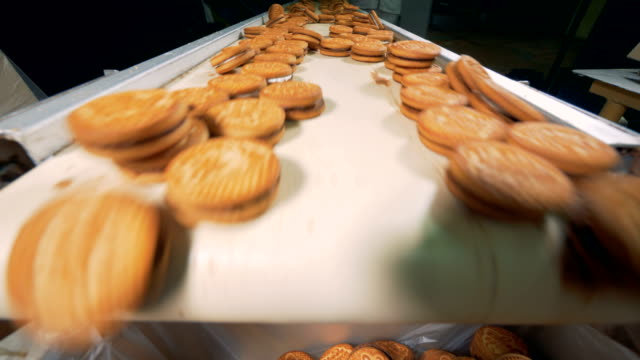 Close up of cookies moving along the conveyor belt and falling from it