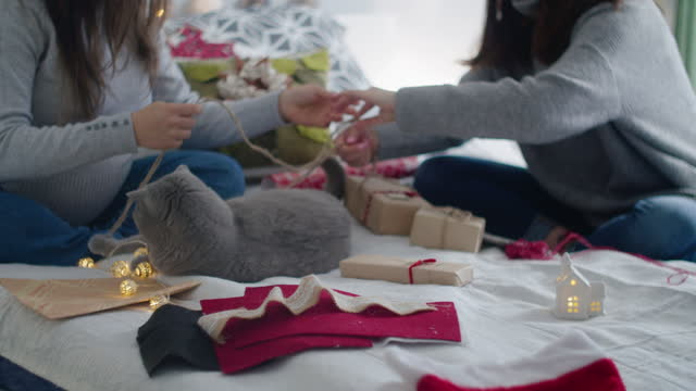 Close up of couple of women and a cat wrapping Christmas presents at home. Workshop at home during COVID-19 pandemic. The new normal. A young beautiful woman with her pregnant friend and her grey cat sitting on the bed in the bedroom, wrapping gifts for the family and friends with sustainable materials. Preparing for the winter holidays celebrations during coronavirus reality. wrapped stock videos & royalty-free footage
