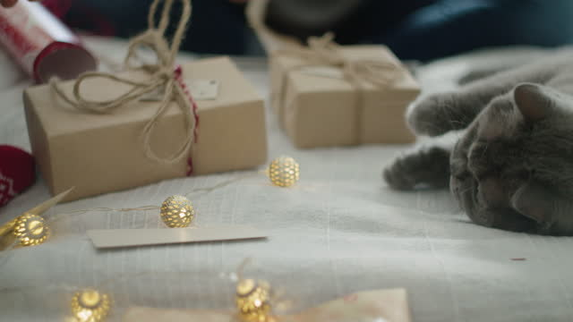 Close up of couple of women and a cat wrapping Christmas presents at home. Workshop at home during COVID-19 pandemic. The new normal.