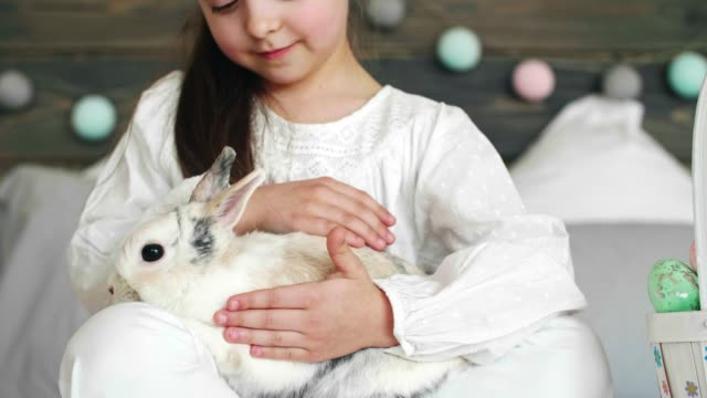 Close up of cute girl stroking the rabbit