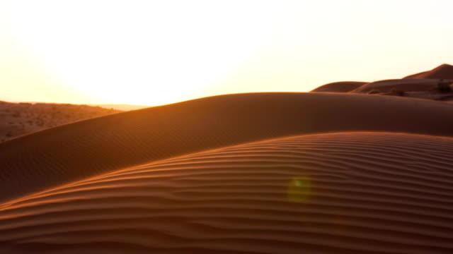 nahaufnahme der wüste bei sonnenuntergang - wüste stock-videos und b-roll-filmmaterial