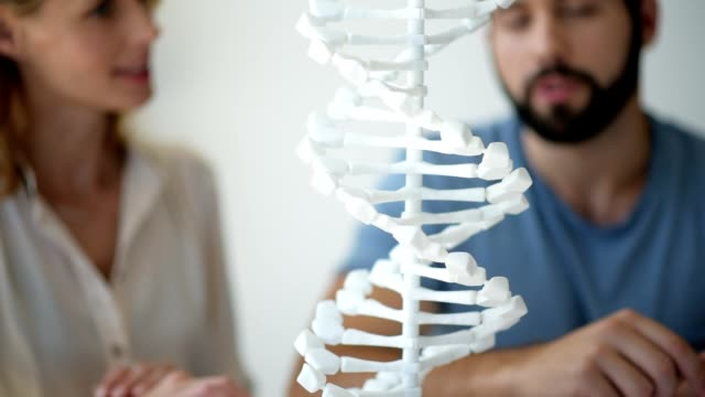 Close up of DNA model observed by millennial scientists Studying genetics. Selective focus on a white 3D DNA model standing on a table with a team of young biologists sitting in the background and studying the life giving genetic code. biosensor stock videos & royalty-free footage