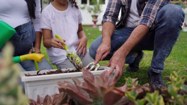 close up of expecting couple and big sister gardening at their backyard looking very happy - gardening video stock e b–roll