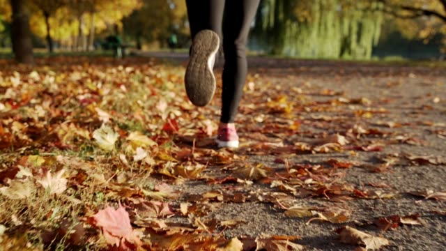 close up of feet of female runner running in autumn leaves. fitness exercise, low depth of focus - autumn filmów i materiałów b-roll