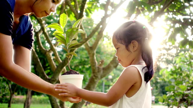 Close up of female holding and giving a young plant to children with love. Concept of family in environmental conservation free day or holidays video