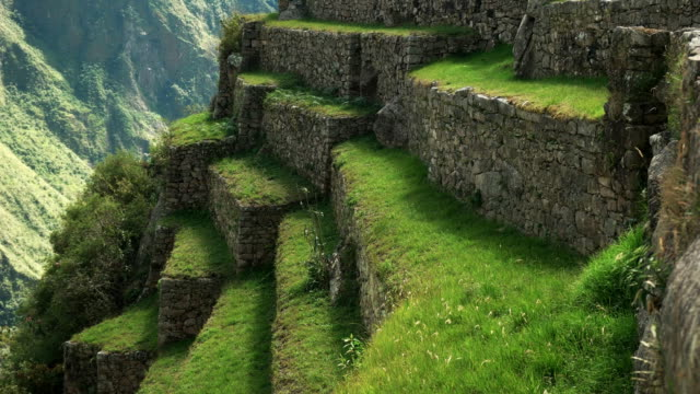 close up of grass growing on teraces at machu picchu close up of grass growing on teraces at machu picchu, peru's most famous tourist attraction ancient architecture stock videos & royalty-free footage