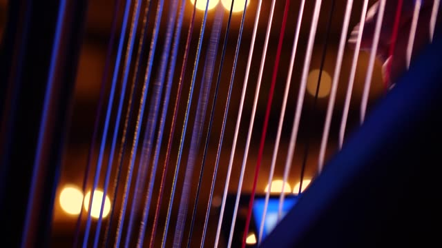 Close up of harpist playing the harp with delicate fingers Delicate fingers play the harp at a live show, the main focus is on the harpists hands and the vibrating strings. Ambient lighting in the background of this classical orchestral concert classical concert stock videos & royalty-free footage