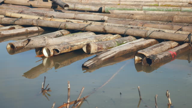 Close up of heaps of bamboo pole stored in water video