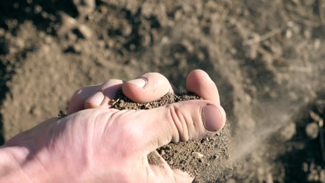 vídeos de stock e filmes b-roll de close up of male hand holding a handful of dry ground and examining it during drought on the field. - paisagem árida