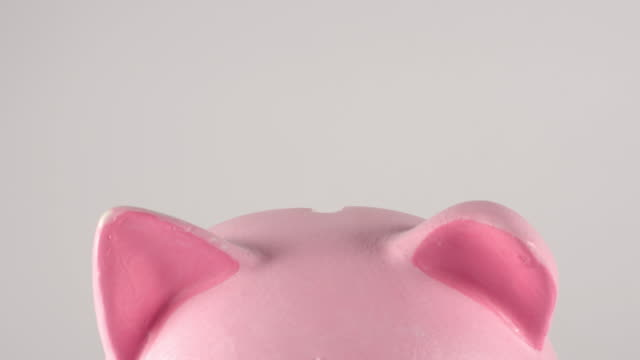 TIME-LAPSE: Close up of male hand throws coins into a pink piggy moneybox TIME-LAPSE: Close up of male hand throws coins into a pink piggy moneybox piggy bank stock videos & royalty-free footage