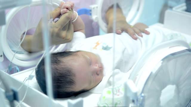 vídeos y material grabado en eventos de stock de primer plano de mano recién nacido dentro de la incubadora, la madre mirando al bebé recién nacido durmiendo dentro de la incubadora de la unidades de cuidado intensivo médico de la madre - nuevo bebé
