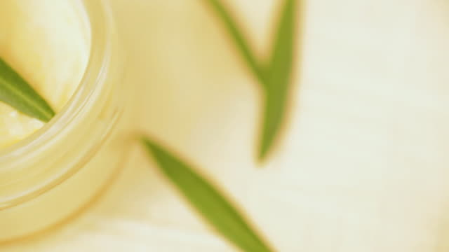 Close up of olive leaf in moisturizing face cream video