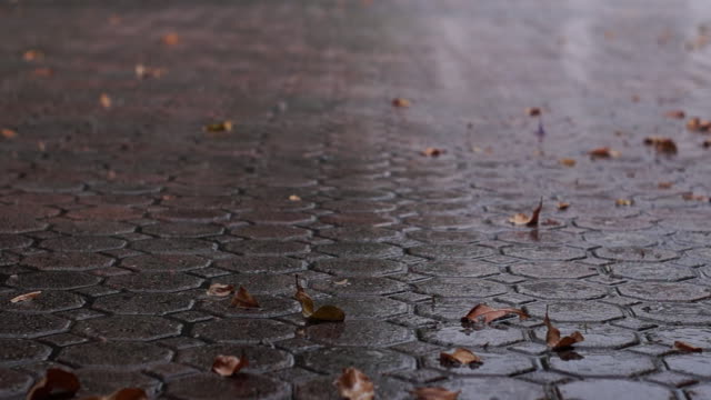 Close up of rain on driveway video