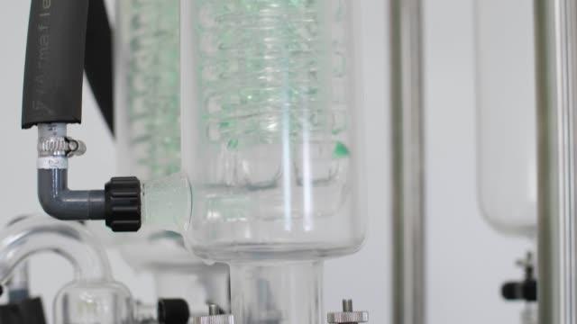 cbda 오일 추출 중 녹색 콘덴서가 있는 회전 기화기 닫기 - 칸나비디올 스톡 비디오 및 b-롤 화면
