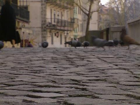 Close up of sidewalk video