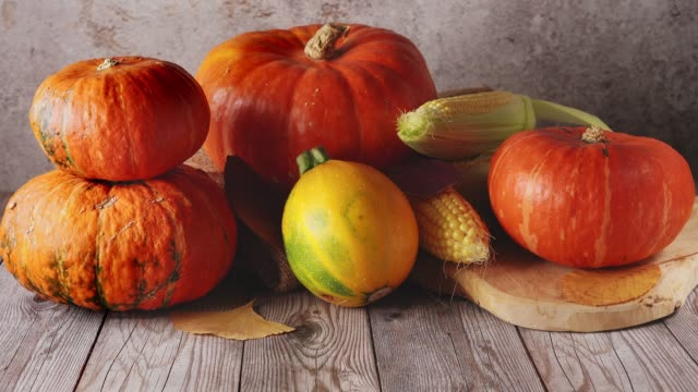 close up of still life with many pumpkins on rustic background - pumpkin pie стоковые видео и кадры b-roll