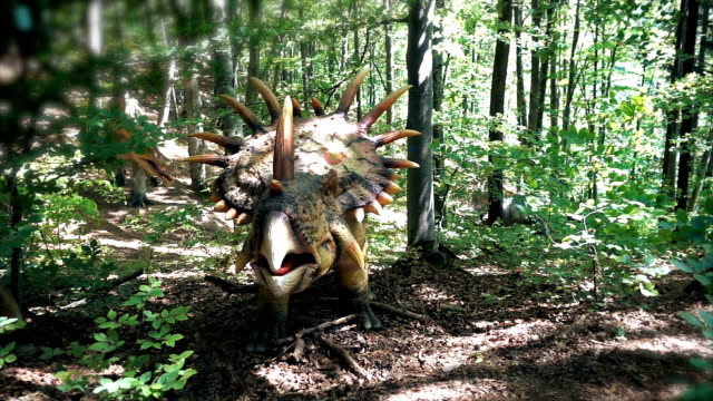 Close up of Styracosaurus dinosaur in wild forest, panning, slow motion